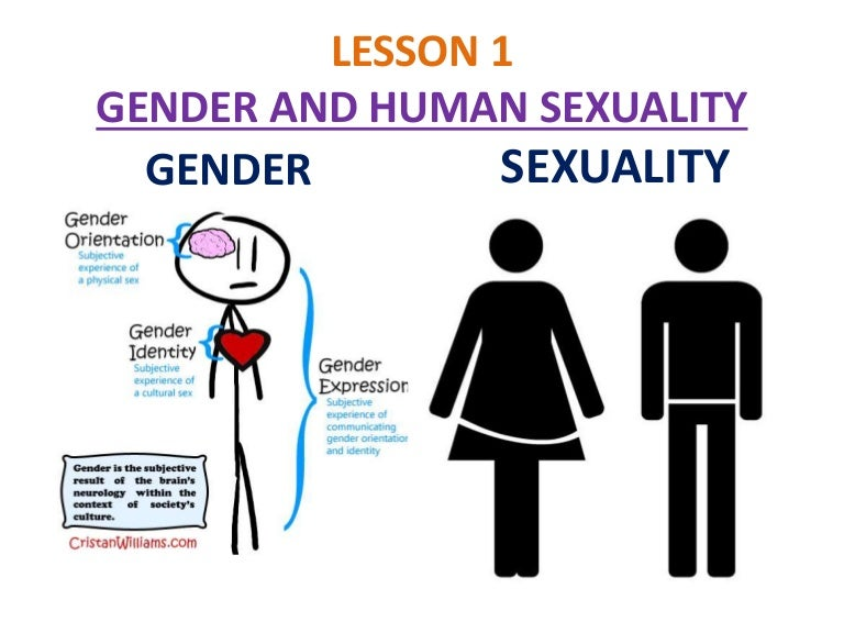 Human Sexuality Issues