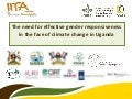 The need for effective gender responsiveness in the face of climate change in Uganda