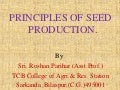 General Principles of Seed Production Technology