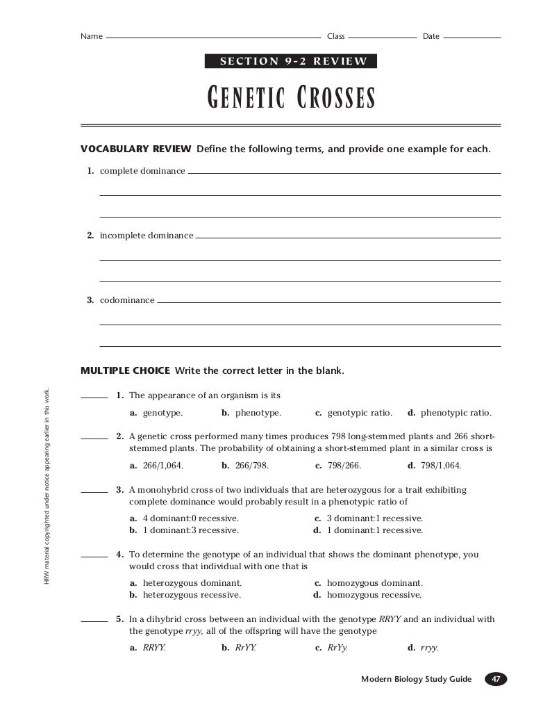 Genetic 92 – Genetics Worksheet