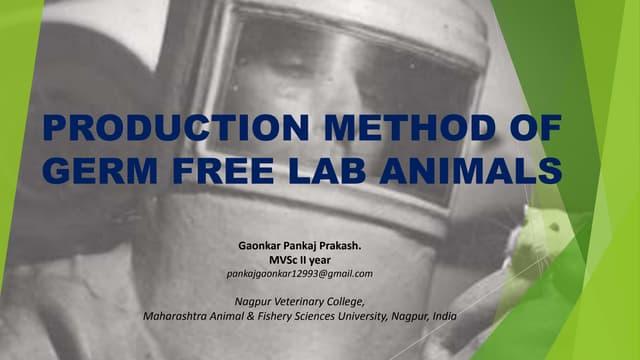 Production method of germ free lab animals