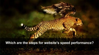 Get the Best Performance, Using Magento 2 Performance Optimization Tricks and Steps