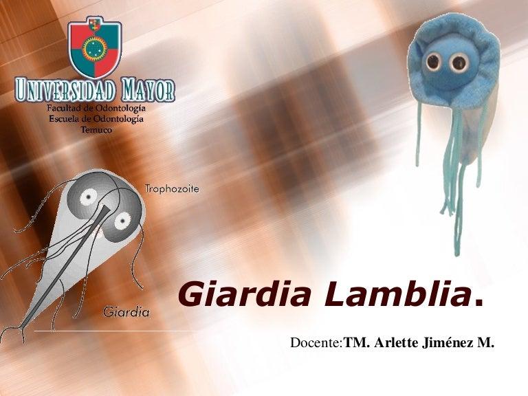 giardia reproduccion asexual)