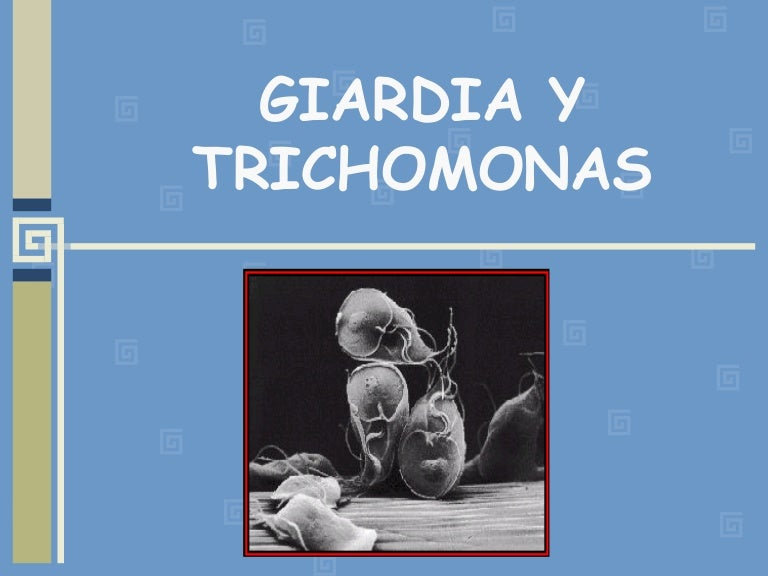 tratamiento giardiasis veterinaria