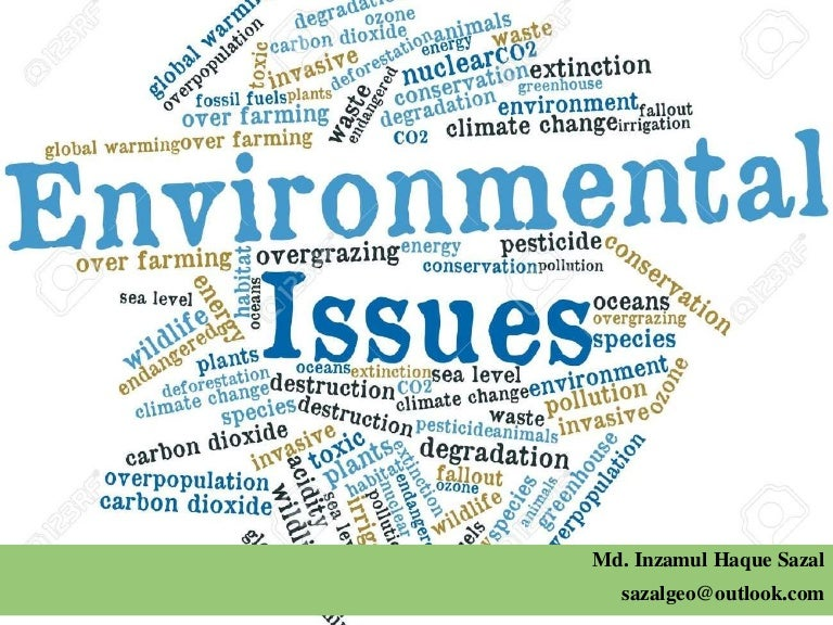world environment essay