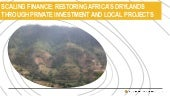 Scaling Finance: Restoring Africa's drylands through private investment and local projects