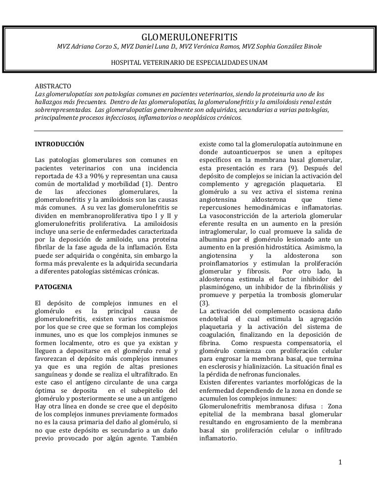 azotemia prerrenal en perros pdf