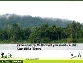 Gobernanza multinivel y la política del uso de la tierra en Perú (Multilevel governance and the politics of land use in Peru)