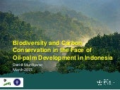Biodiversity and Carbon Conservation in the Face of Oil-palm Development in Indonesia
