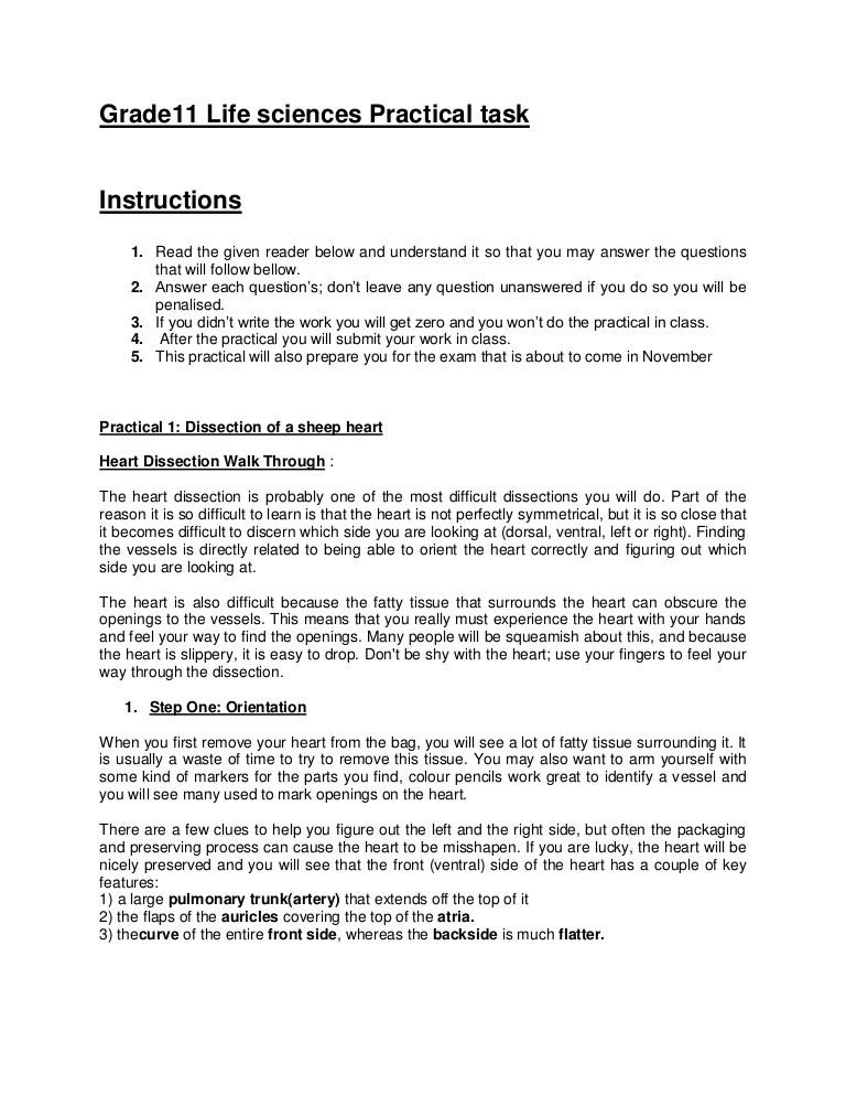life orientation exam papers 2013 rh life orientation exam papers 2013 ballew us
