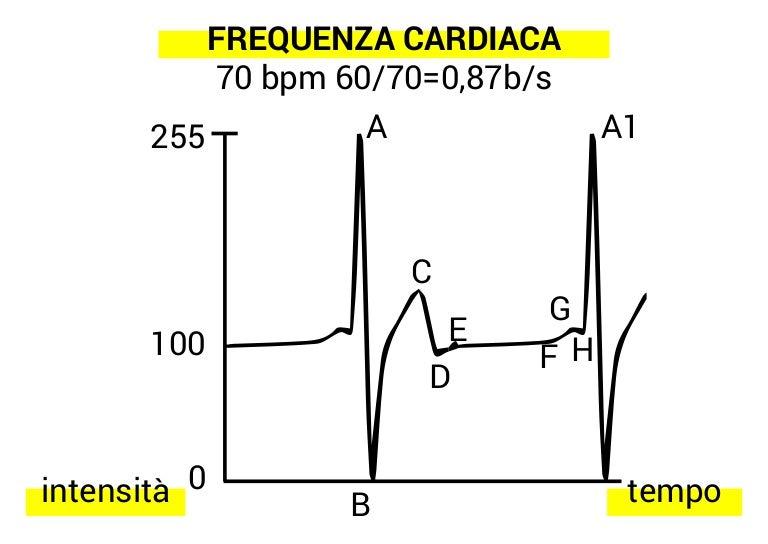 HEART RATE ANALYSIS