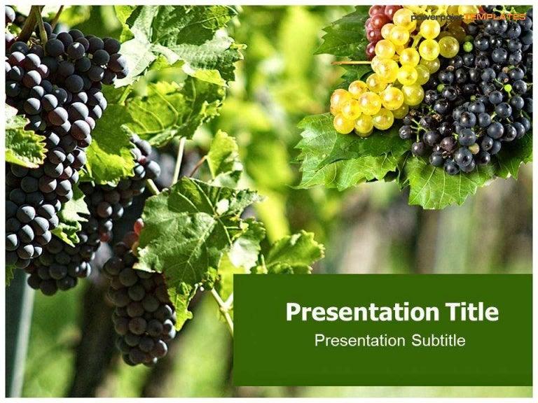 Presentation slides on grapes toneelgroepblik Images