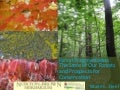 Forest Fragmentation: The States of Our Forests & Prospects for Conservation