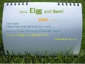 Green Elgg and Bam!