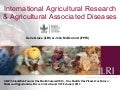 International agricultural research and agricultural associated diseases