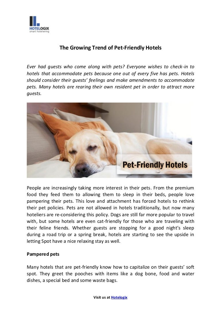 Growing trend of pet friendly hotels
