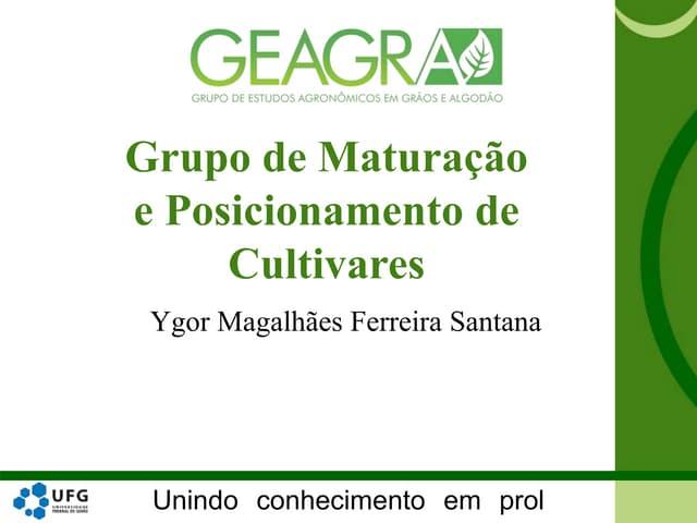 Grupo de Maturação e Posicionamento de Cultivares