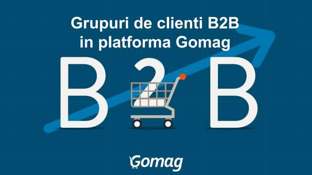 Grupuri de clienti B2B in platforma ecommerce Gomag