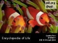 Encyclopedia of Life: Applying Concepts from Amazon and LEGO to Biodiversity Informatics