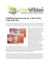 Gsr Special Series #1 - A Tale of Two Cedis Part Two)