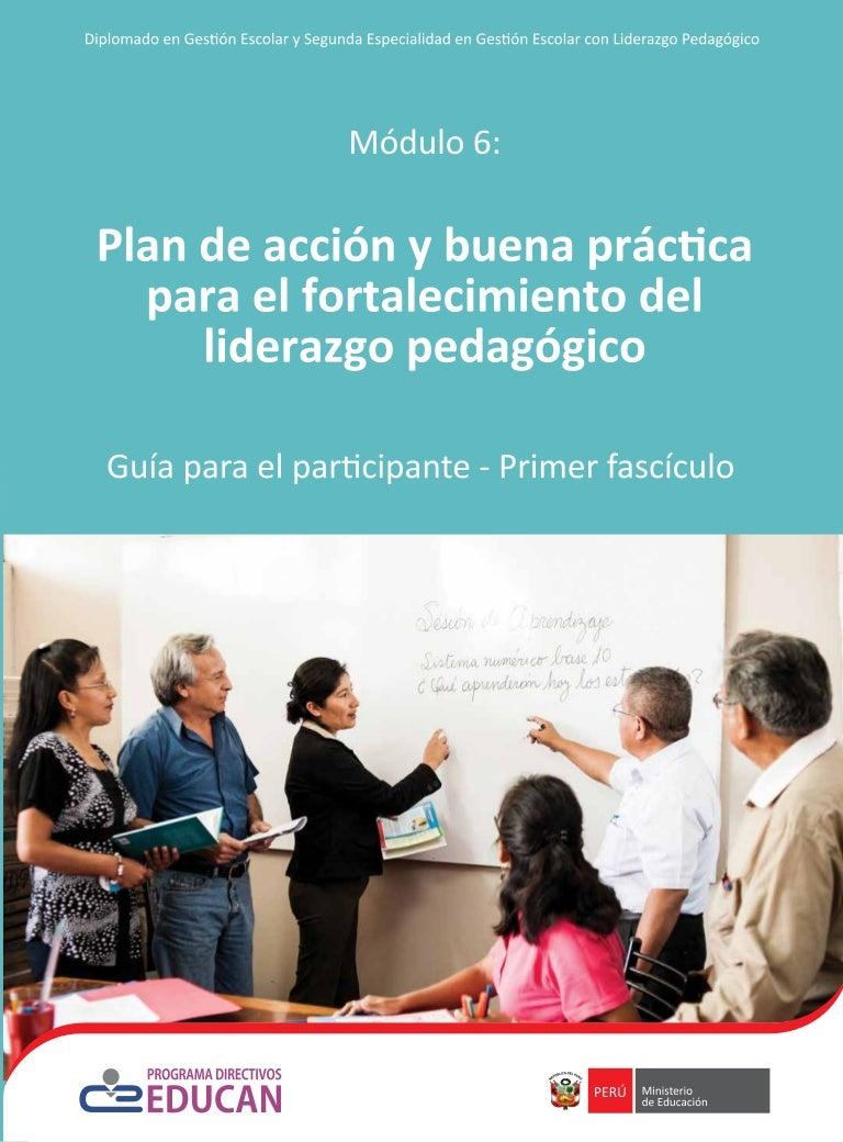 Plan de acción y buena práctica para el fortalecimiento del liderazg…