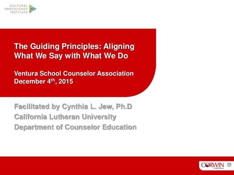 What are guiding principles? definition and meaning.
