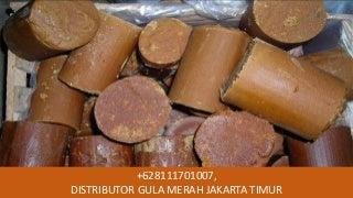 TERLARIS WA +62 811-1701-007, Gula Merah Koin Super di Jakarta Utara