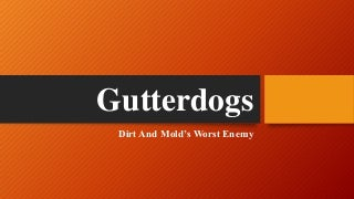 Gutterdogs-Removing Mold's & Dirt