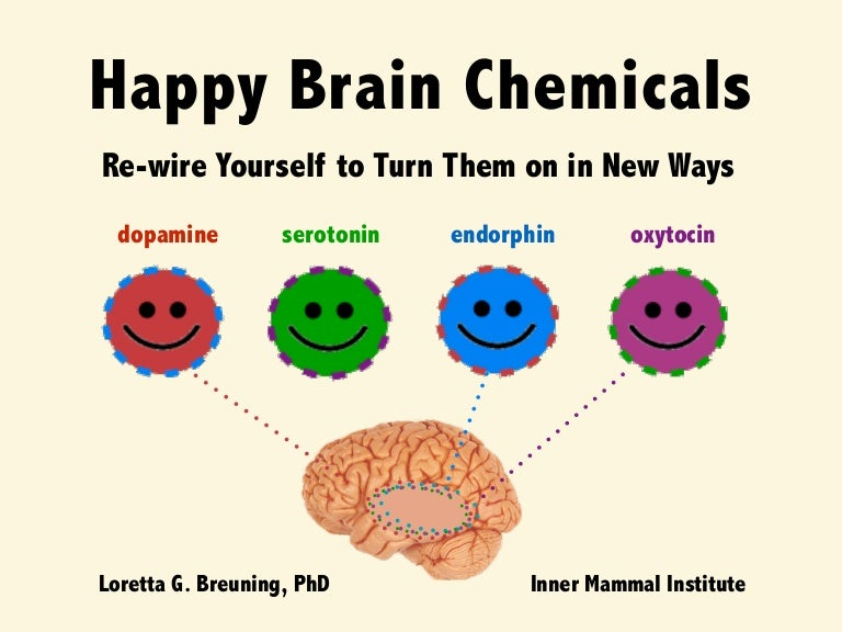 Happy brain chemicals: Dopamine, Serotonin, Oxytocin and