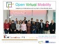 Collaborative Learning Hub for Virtual Mobility Skills