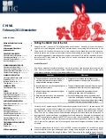 China Newsletter, Feb. 2011 by HC Int'l