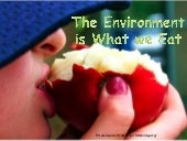 The Environment is What we Eat by Grace Mahon