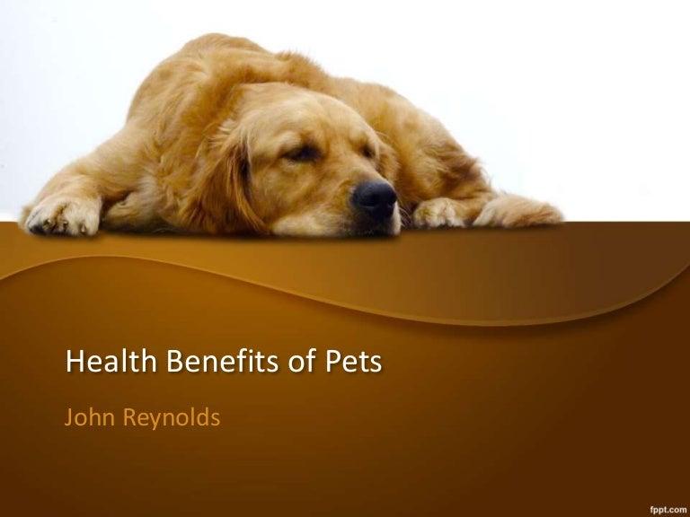 online pets health