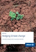 Hedging Climate Change