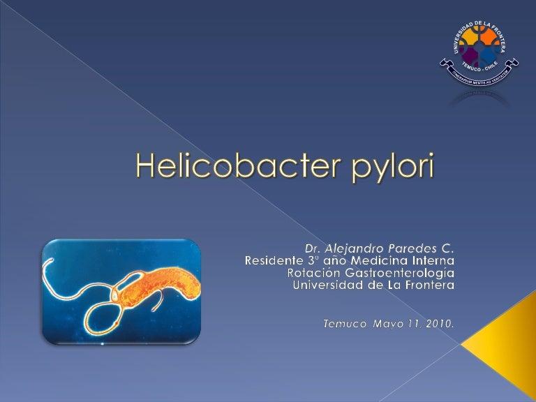 que es una bacteria helicobacter pylori