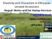 Linseed Linum or Flax Morphological & Molecular Diversity in Ethiopia: PAGXXIII talk Worku & Heslop-Harrison