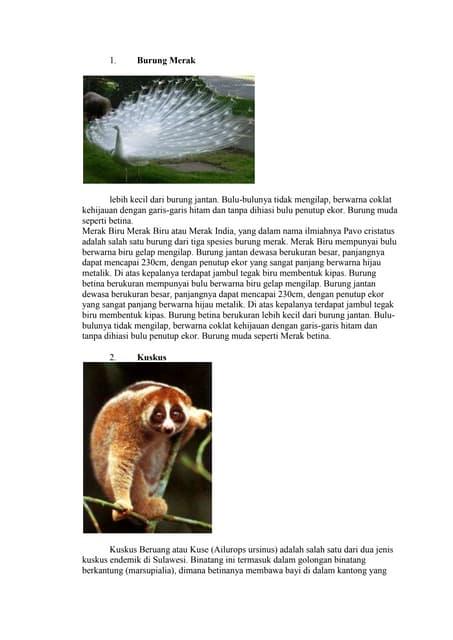 940+ Gambar Hewan Dan Tumbuhan Langka Beserta Penjelasanya Terbaru