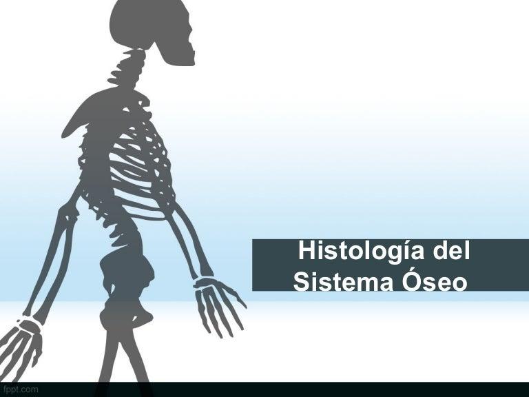 Atractivo Anatomía Plantillas De Powerpoint Molde - Anatomía de Las ...