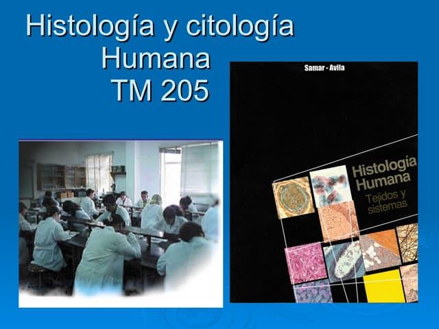 HistologíA Y CitologíA Humana (I)