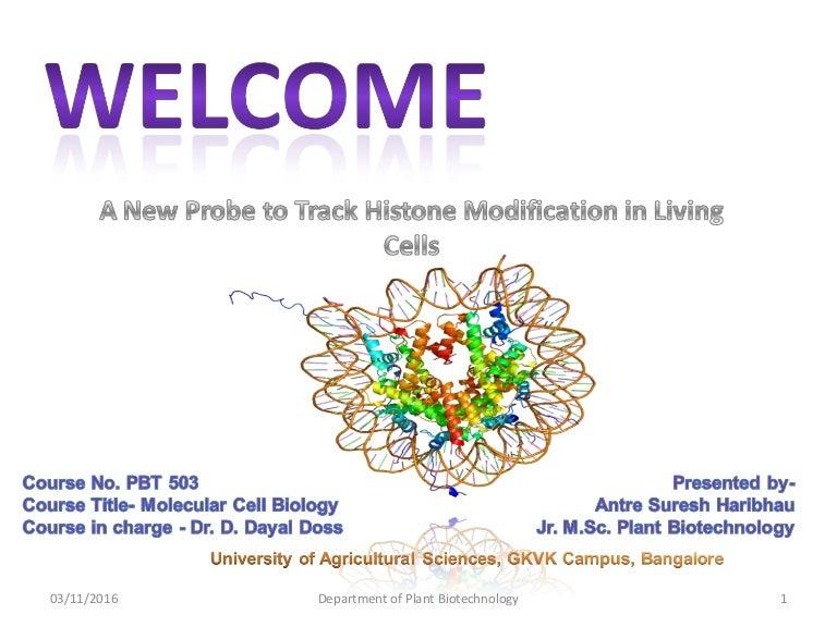 histone modification in living cells