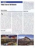Tibet korai története