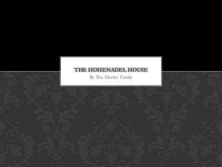 Hohenadel House Renovation Project *Update*