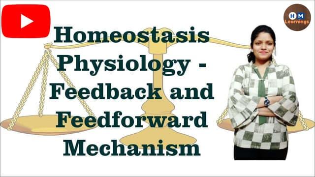 Homeostasis I Negative and Positive Feedback Mechanism I Feedforward Mechanism I General Physiology I