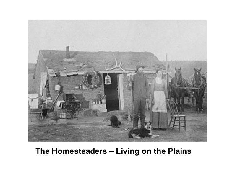 Homesteaders Living On The Plains