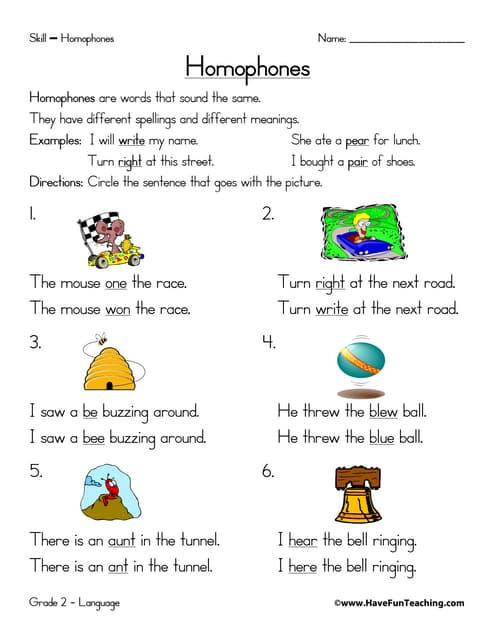 Vocabulary focus-workbook
