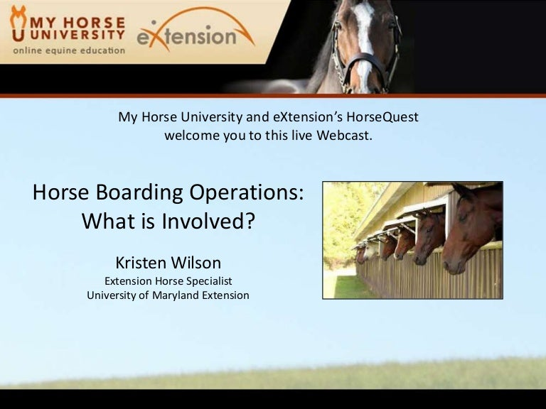 sample equine business plan powerpoint