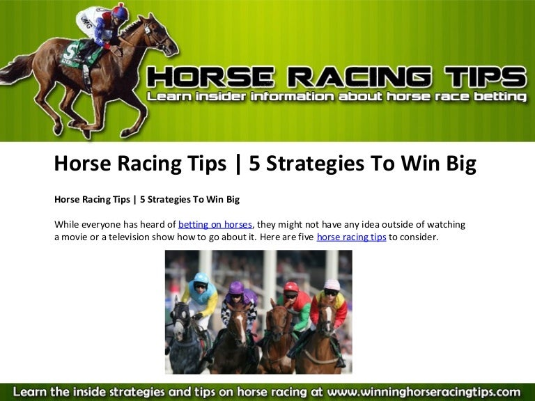 Horse racing betting information man of the match betting twitter account