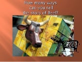How many ways can you tell the story of beef by Caitlin Vella