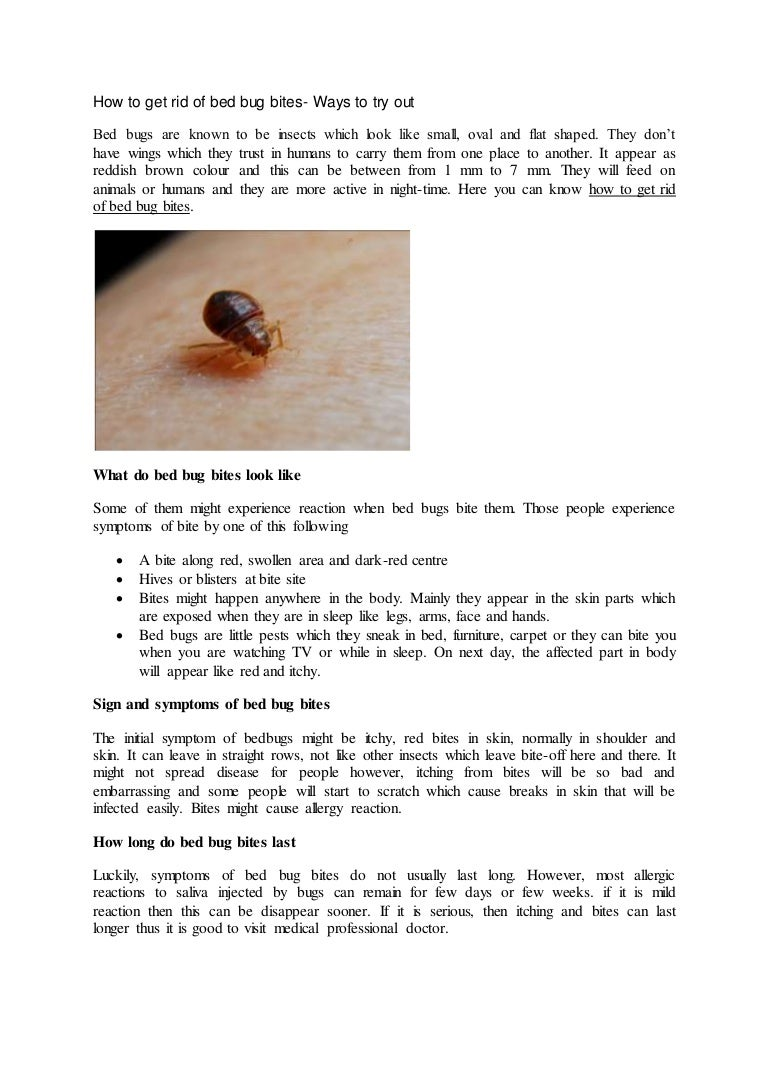 to how home bugs get rid getting remedies howtogetridofbedbugs bed of