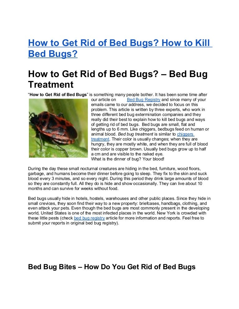 - How To Get Rid Of Bed Bugs How To Kill Bed Bugs-
